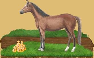 "The <a class="""" href=""lipizzan-horse-3015/"" title="""">Lipizzans</a> available to the highest bidder"